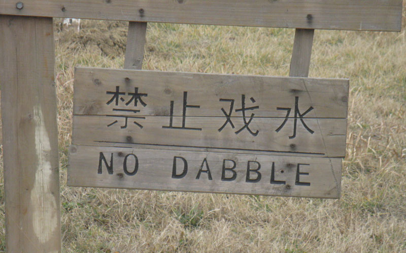 Don't Dabble