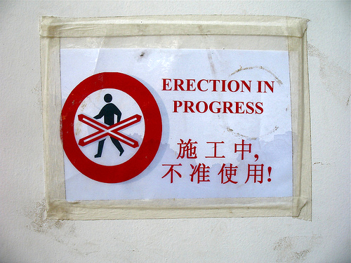 Different words for erection