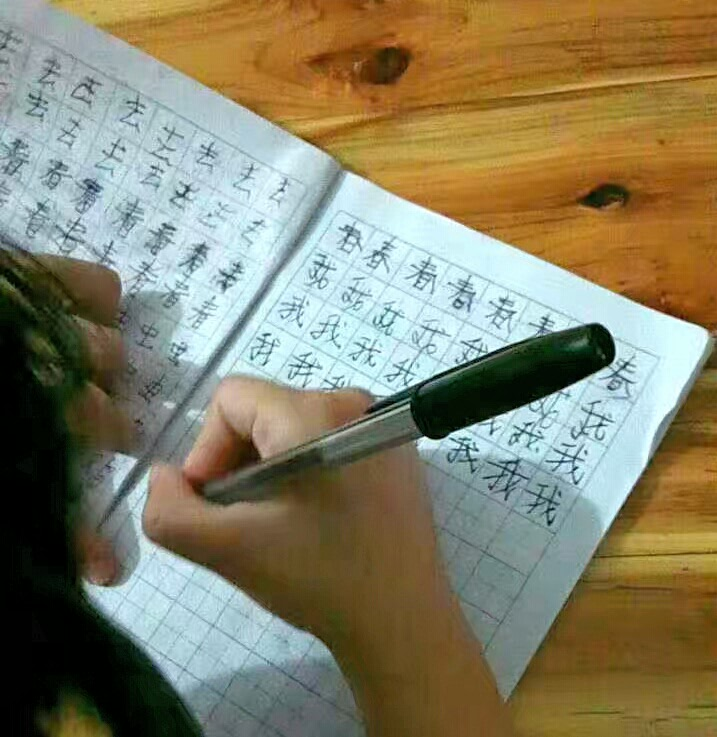 Language Log Learning To Write Chinese Characters